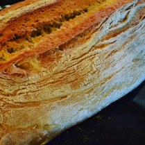 Il pane di oggi
